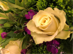 Blumen Blumen Blumen Zum Valentinstag Best Gruppe